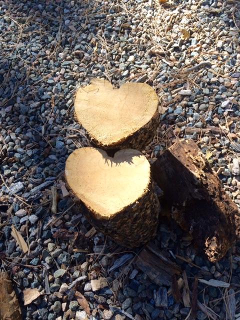 Heart Logs